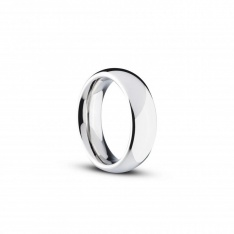 Stainless Steel Cock And Ball Ring